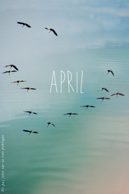 april_recto